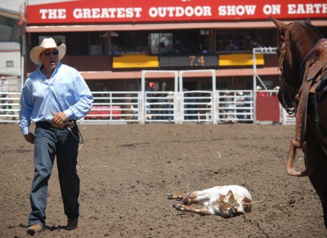 Calgary, 2005. Heille, sais-tu c'est quoi la différence entre un veau pis une puck de hockey? Le cowboy non plus, il le sait pas.